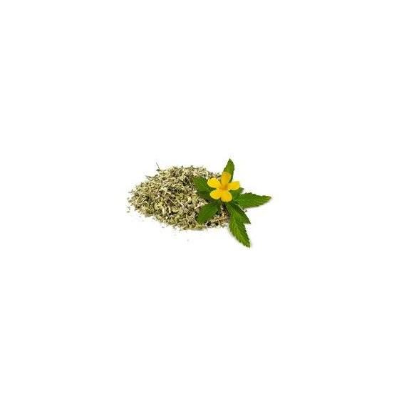 Damiana ( Turnera diffusa ) 30 G